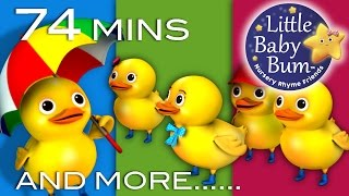five little ducks   plus lots more nursery rhymes   74 minutes compilation from littlebabybum
