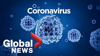A background on the coronavirus and its symptoms