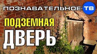 Подземная дверь дома в Сергиевом Посаде Познавательное ТВ Артём Войтенков