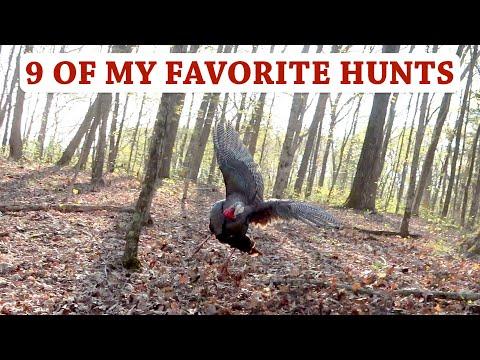 My Best Turkey Hunts 2015-2020