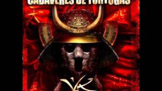 Cadaveres De Tortugas - Sleepwalker