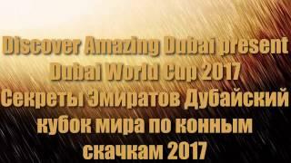 Dubai World Cup 2017|Дубайский международный кубок мира по конным скачкам 25.03.2017|Скачки в Дубае