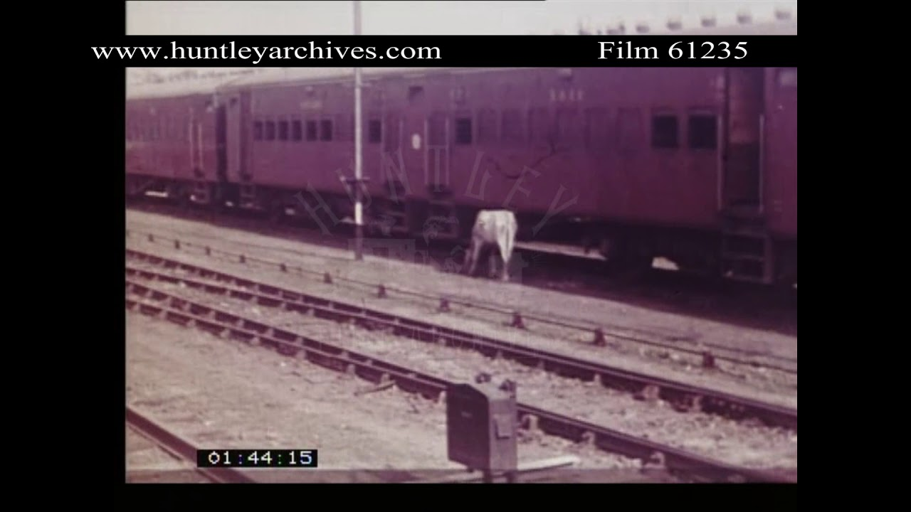 Excellent Footage Of Indian Railways Early 1960s Archive Film 61235
