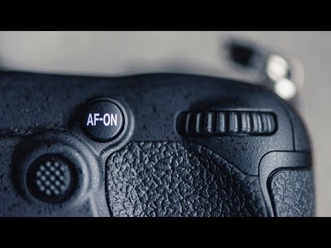 Nikon Autofocus Setup for Wildlife Photography and Action - AF trick!