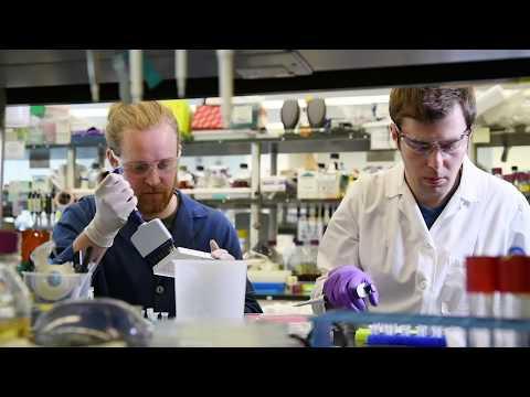 0 - Neue Forschung könnte zu einem DNA 3D-Drucker führen