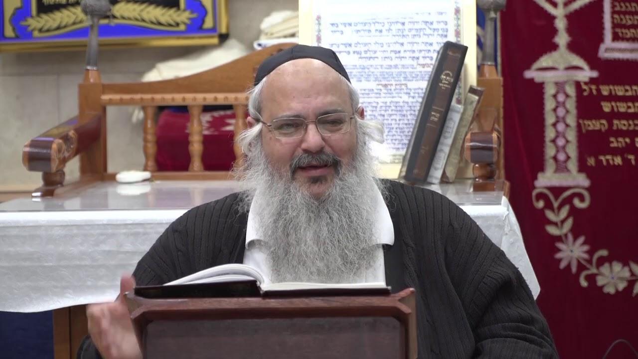 הרב שלמה לוינשטיין פנינים מפרשת תזריע התשע''ט