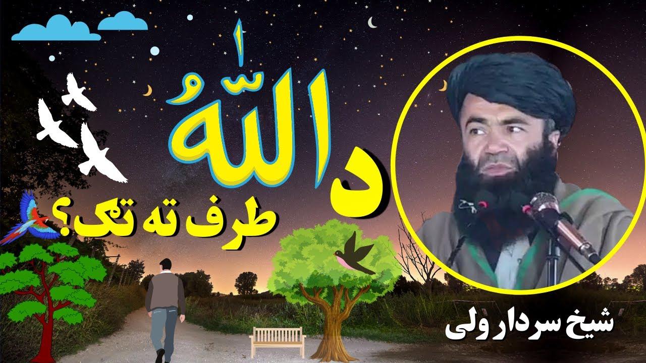 Download Allah Ki Taraf Jane Wala Rasta | داللّٰہ طرف تہ تګ | Sheikh Sardar Wali Pashto Bayan