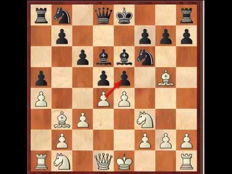 Robin van Kampen vs Li Chao Reykjavik Open 2014