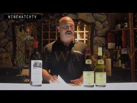 Louis Jadot Burgundy Seminar with Kurt Eckert at Wine Watch Wine Bar - click image for video