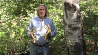 instructions on how to use 4n2 rattling antlers