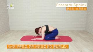 [엎드린 스핑크스] 척추측만, 바른척추 교정운동_하루5…