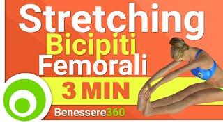 Stretching Bicipiti Femorali - I migliori Esercizi di Allungamento