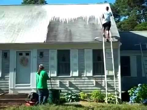 The Roof Cleaning Process