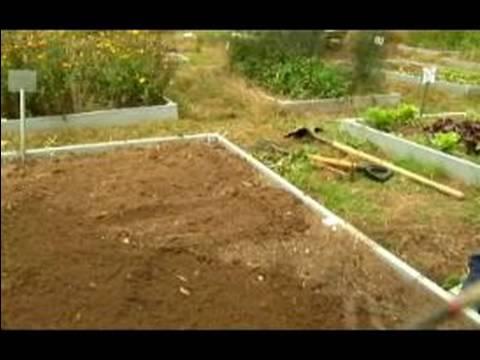 Basic Gardening Tips How to Prepare Garden Beds for Winter YouTube