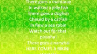 Rock Lobster Lyrics