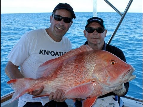 Big Red Emperor Fishing Madness!!  Deep Sea fishing the Grea