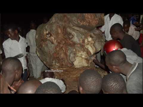 MAAJABU: Mti umekuwa gumzo baada ya kugoma kukatwa, Mwanza