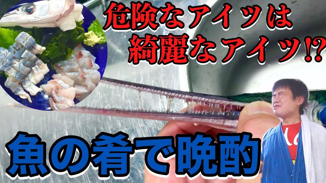 【魚の肴で一人呑み】危険な魚は見た目から想像も出来ない様な麗しさでとかされかけた【家呑み】