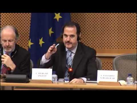 European Parliament Petition hearing regarding child abduction by Dutch social services 20-02-2013