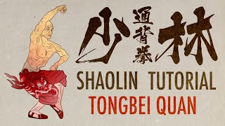Tongbei Tutorial