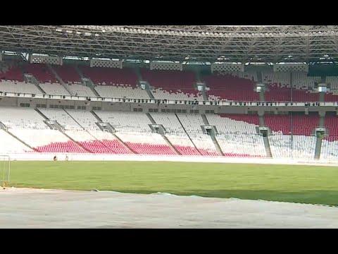 Rumput Baru Stadion Gelora Bung Karno