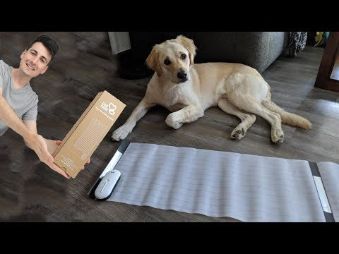 BEST PET TRAINING MAT - Dog Care Pet Shock Mat for Cats Dogs Review
