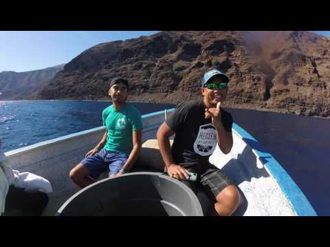 Isla Guadalupe White Shark Adventure 2016