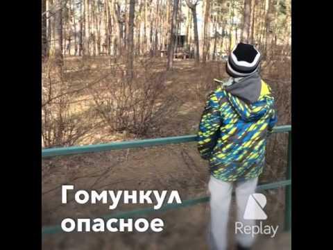 ГомункулКороткометражный фильмOMG