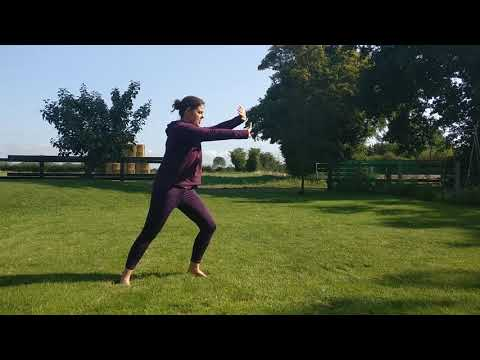 Qigong for Health | Organ cleansing routine