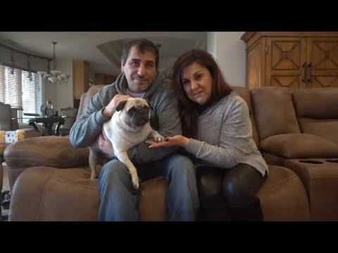 MAKING DECISION FOR OUR DOG (BOSLEY) | MAMA RUG AND PAPA RUG