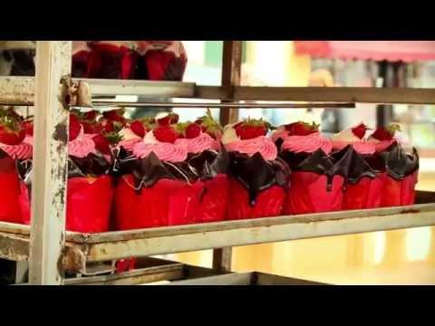 THE STRAWBERRY FESTIVAL - MGARR (MALTA)