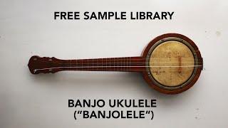 FREE SAMPLE: Banjo Ukulele (Banjolele) Sample Library [Kontakt & SFZ]