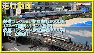【走行動画】鉄道コレクション 伊豆急行8000系 (TA-7編成・イベント塗装) (TB-2編成)【鉄道模型・Nゲージ】
