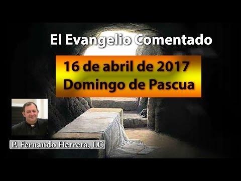 Domingo de Pascua - Ciclo A - ¡Resucitó!