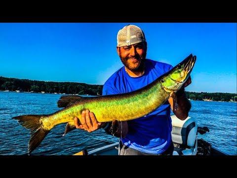 Fishing Chautauqua Lake, Holiday Harbor Musky Tournament 2018