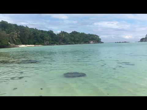 Anse Royale Seychelles islands