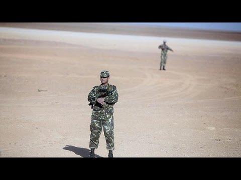 Mali, Algeria step up war against terror