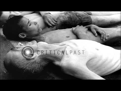 Dead bodies of emaciated prisoners at Dachau Concentration Camp in Germany during...HD Stock Footage