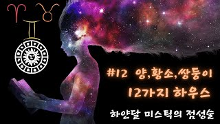 점성술 12 - 양자리, 황소자리, 쌍둥이자리 12가지 하우스