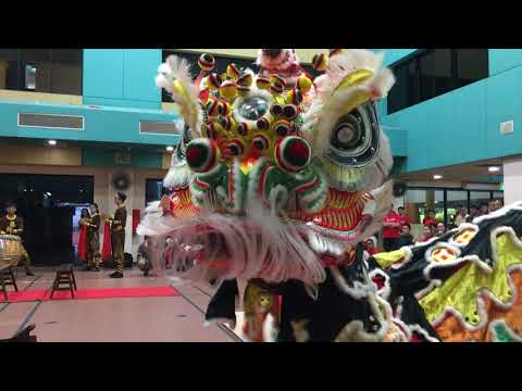 1st Traditional Lion Dance Competition 2017: Singapore Dragon & Lion Athletic Association Team A