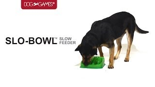Slo-bowl Slow Feeder