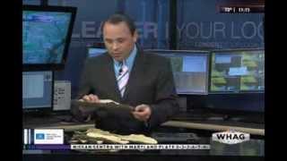 WHAG News @ 11:00 PM - Martinsburg, Berkeley County, WV Tornado Touchdown - Monday 6/9/14