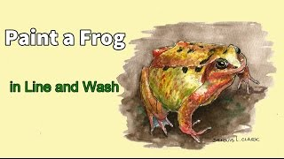 Line and wash watercolor painting tutorial - How to draw and paint a colorful frog
