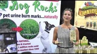 Pet Product Review - Dog Rocks - Superzoo 2014
