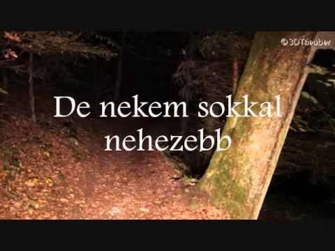Gotye - Heart's A Mess (magyar)