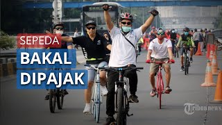 Semakin Menjamur, Sepeda Bakal Dipungut Pajak, Kemenhub Buka Wacana Pesepeda Bayar Pajak
