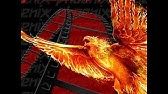SPORTS on KODI with the Phoenix Addon - YouTube