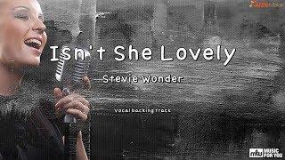 Isn't She Lovely - Stevie Wonder (Instrumental & Lyrics)