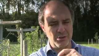 La Castelette : un verger maraîcher expérimental à Avignon