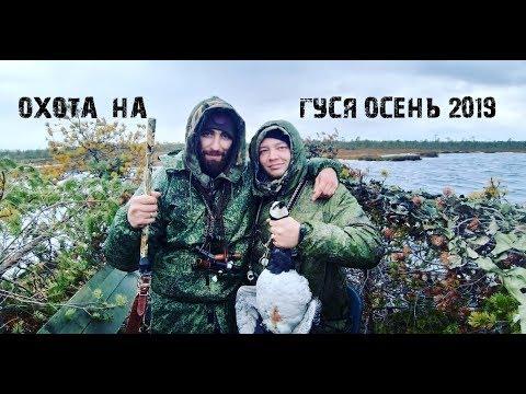 Охота на Гуся.Осень 2019.На охоту на Bla Bla Car. В Архангельск.
